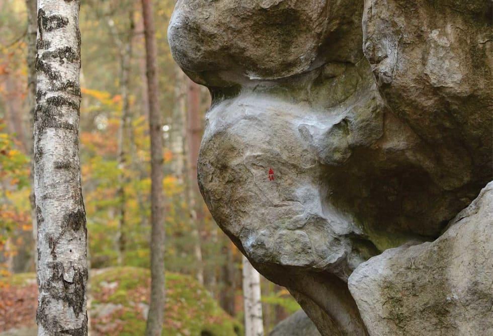 Kunst: Nydelige formasjoner på Isatis. Foto: Øystein Andresen