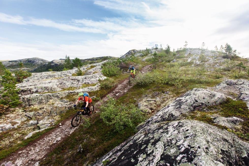 STI-SKOLEN: Daniel Bjaltmann og Erik Eide Bye jager på stien ned fra Borras mot Alta. Etter et år på folkehøgskole i Alta har vet de hvor de beste stiene er å finne.