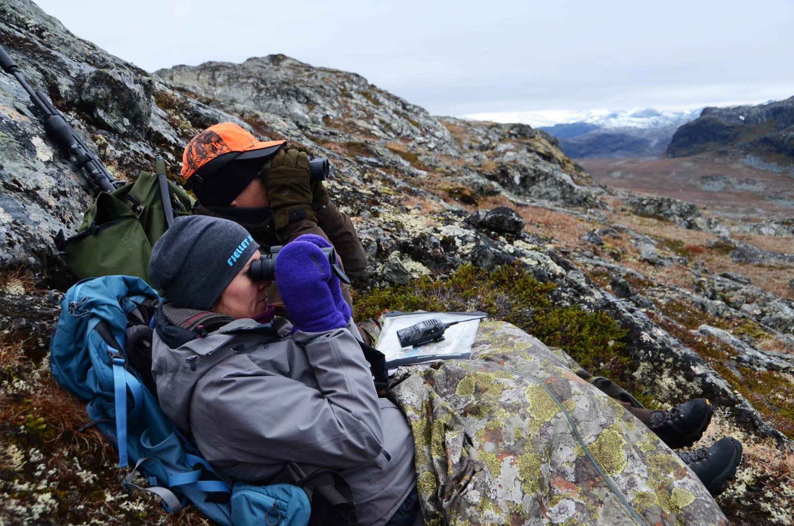 HOLD UTKIKK: Det gjelder å ha god tålmodighet om du skal få øye på et reinsdyr. Robert og Anita har satt seg godt til rette.