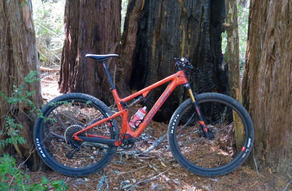 TESTSYKKELEN: Vår test-Blur i Skeggs forest en times kjøring fra Santa Cruz. Foto: Øyvind Aas