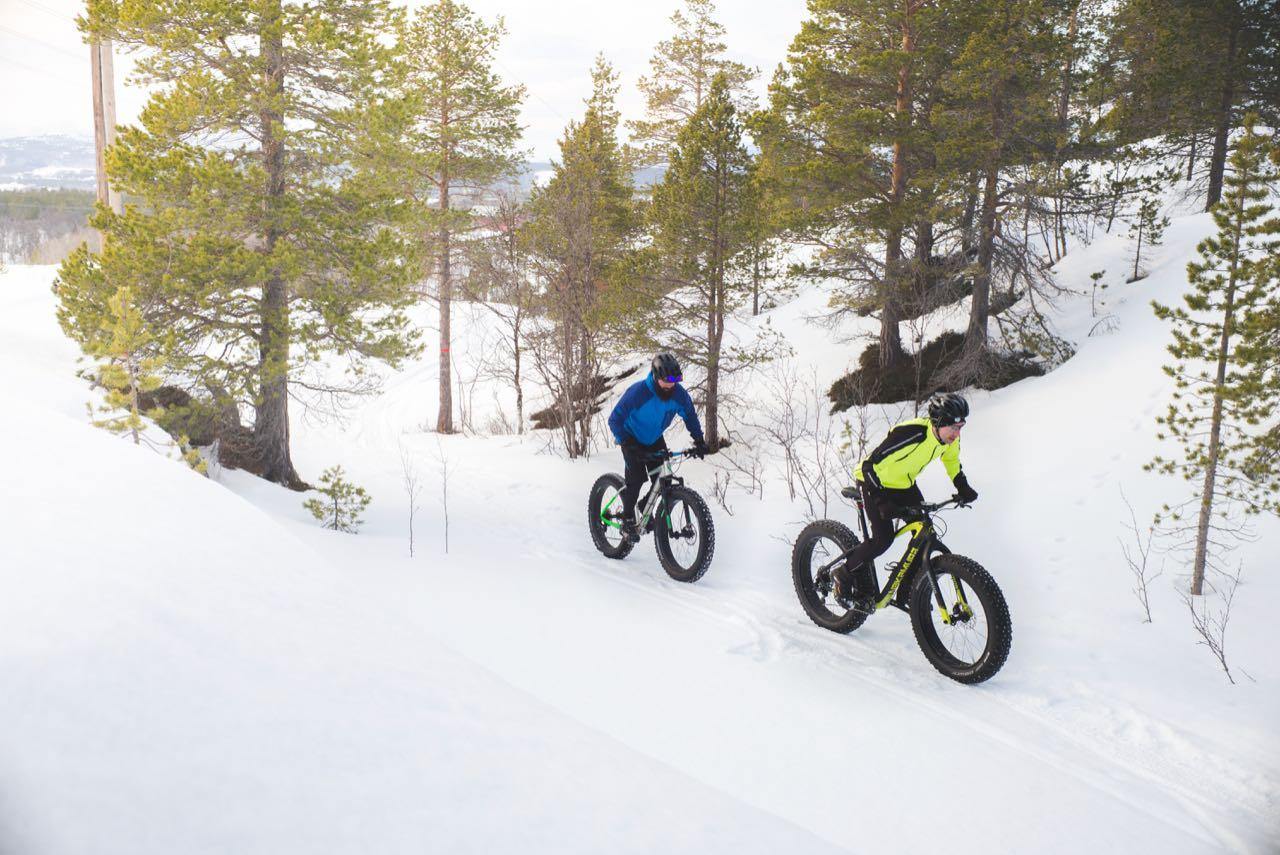 I byene er det overraskende mange som foretrekker å gå til fots om vinteren, også i skogen. Sjur Melsås