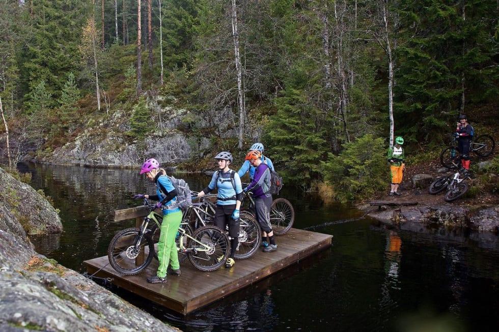 GTG Gulljakt i Østmarka Oct 2017 Bridge - Bjørn Enoksen 1400x933