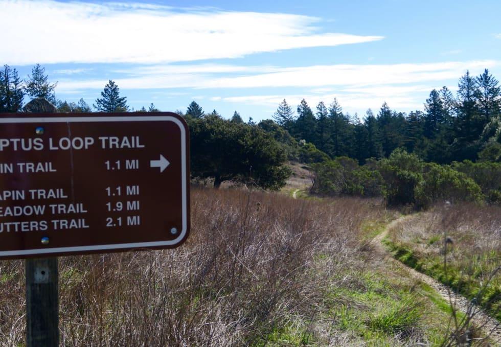 KLASSISK: Stiene i Santa Cruz har vært åsted for mang en prototype-test opp gjennom årene.