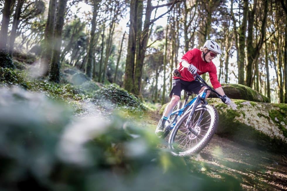VARIERT TERRENG: Stiene i Sintra bød på myk skogbunn, hopp og stier med fast grusunderlag. Foto: Markus Greber