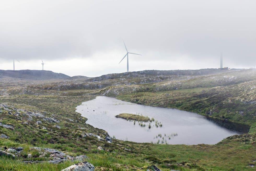 Lite tjern: Det er flere vakre tjern og vann inne i konsesjonsområdet til Hitra 2 vindpark. Bak skimtes en rekke vindturbiner. Trøndelag er et av de fylkene som har mistet aller mest inngrepsfri natur de siste 20 årene.