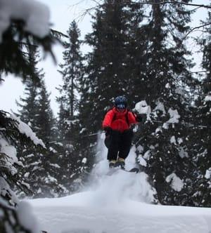 Åpen skog: Peder Julland leker seg ned fra Fugleknattene i Hakadal. Foto: Matti Bernitz