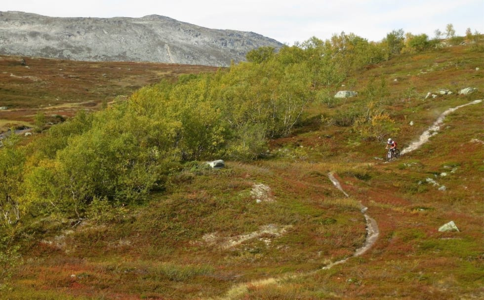 Turen Dindalen til Åmotsdalen byr på episke fjellstier og er en av turene som tilbys på årets utgave av Oppdal Stisykkelcamp. Foto: Steffen Fjelldal