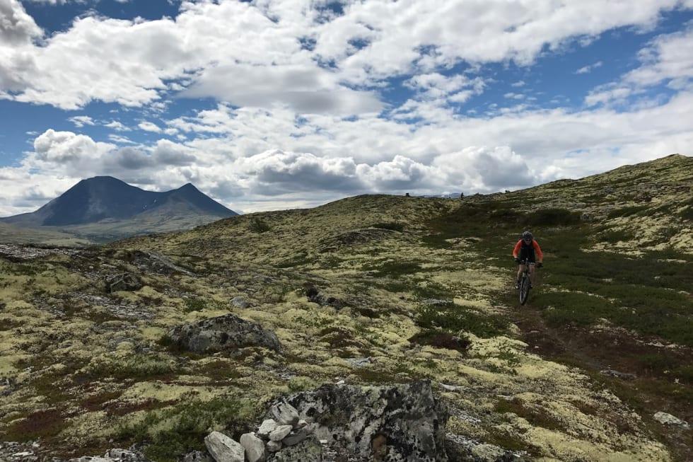 Fra seter til spa. Guidet stisykkeltur fra Alvdal Vestfjell til Einunndalen og Savalen - Audun Lutnæs 1400x933