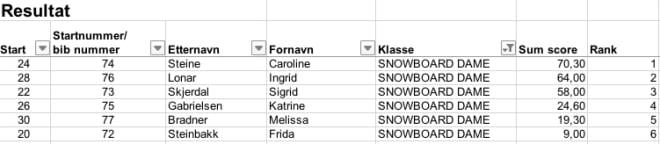 Snow-damer