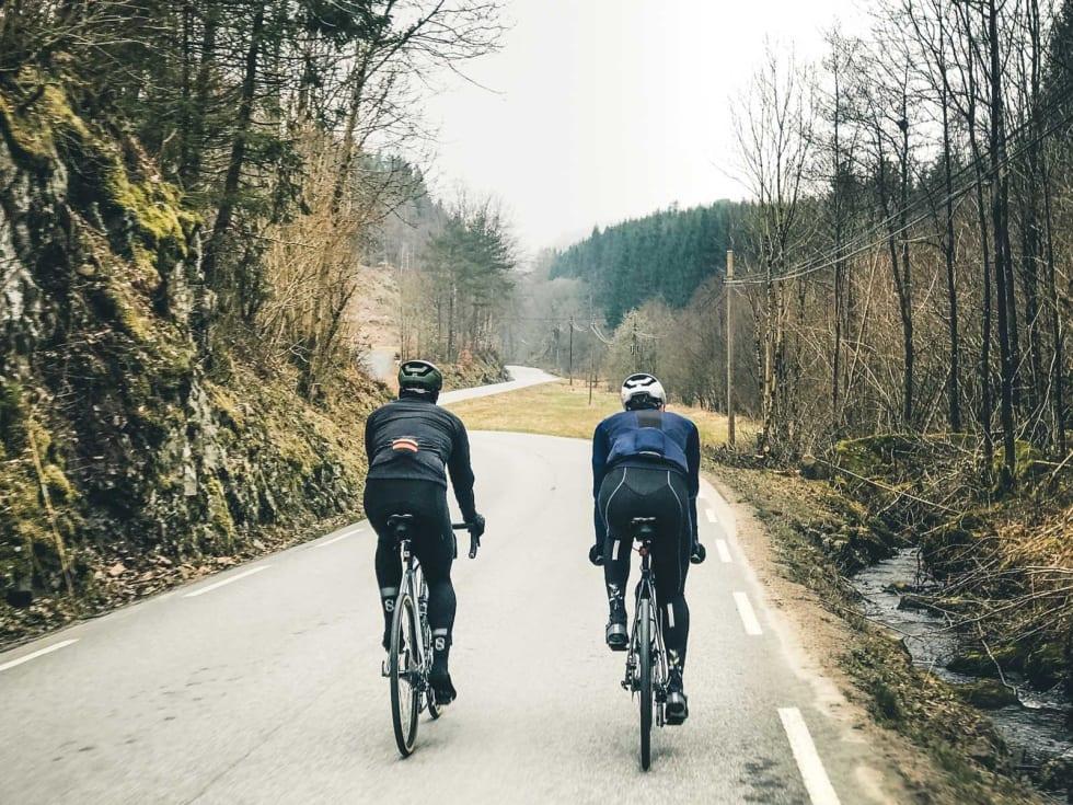 MOSEGRØNT: Skogmystikk og mosegrønt, avbrutt av smalslyngende landevei, uten trafikk.