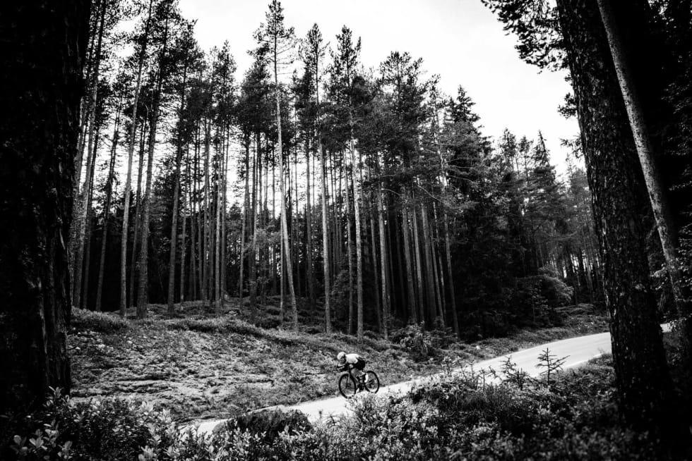 AUTOPILOT: Gjermund Kvåle Jordheim søker høy fart i furuskogen ovenfor Rorbru. Løypas bratteste utforkjøringer gir god mulighet for store fartsopplevelser.