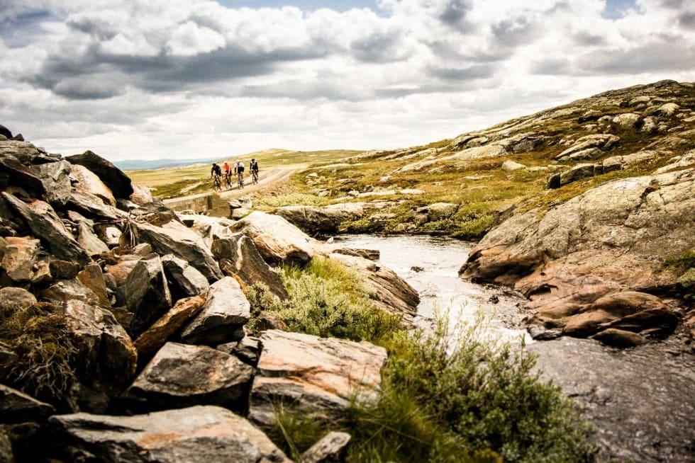 UNDER DEN HVITE BRO: Der finner du kanskje et troll, men det overlever neppe siden Gjermund er med. Broen ligger like etter Lauvdalen, et sæter-og hytteområde.