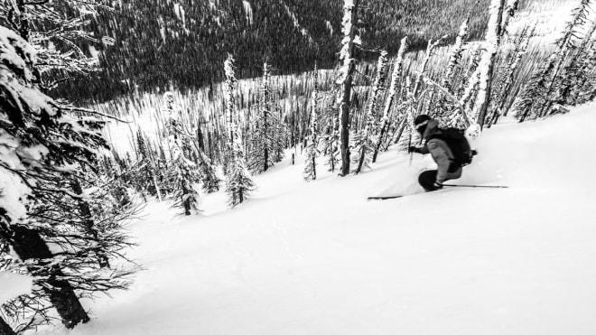 BRENT SKOG: Det betyr avstand mellom trærne. Foto: Øystein Bjelland