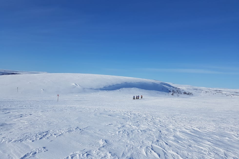 Store vidder - på Beskades fjellparti mellom Gargia og Suolovuopmi Foto Ulf Helge Johansen 1400x933