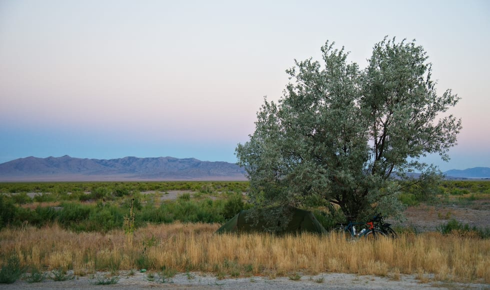 Vi fant skygge i Nevada