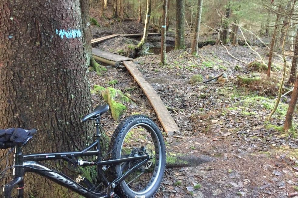 Trails - Trond Dyrnes 1400x933