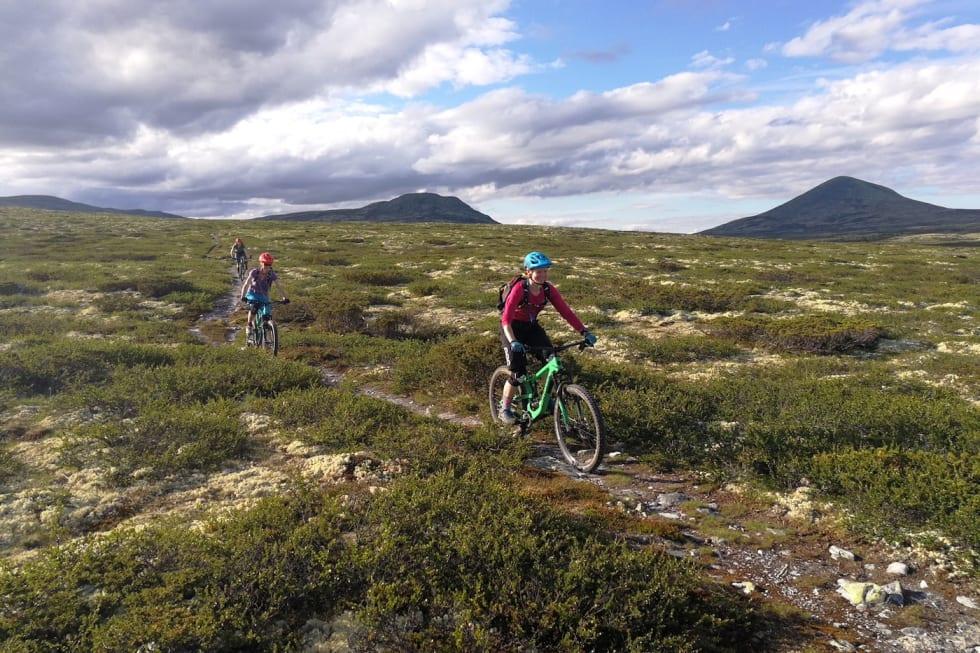 Flytsti Venabygdsfjellet - Foto NOTS Lillehammer og Omegn 1400x933