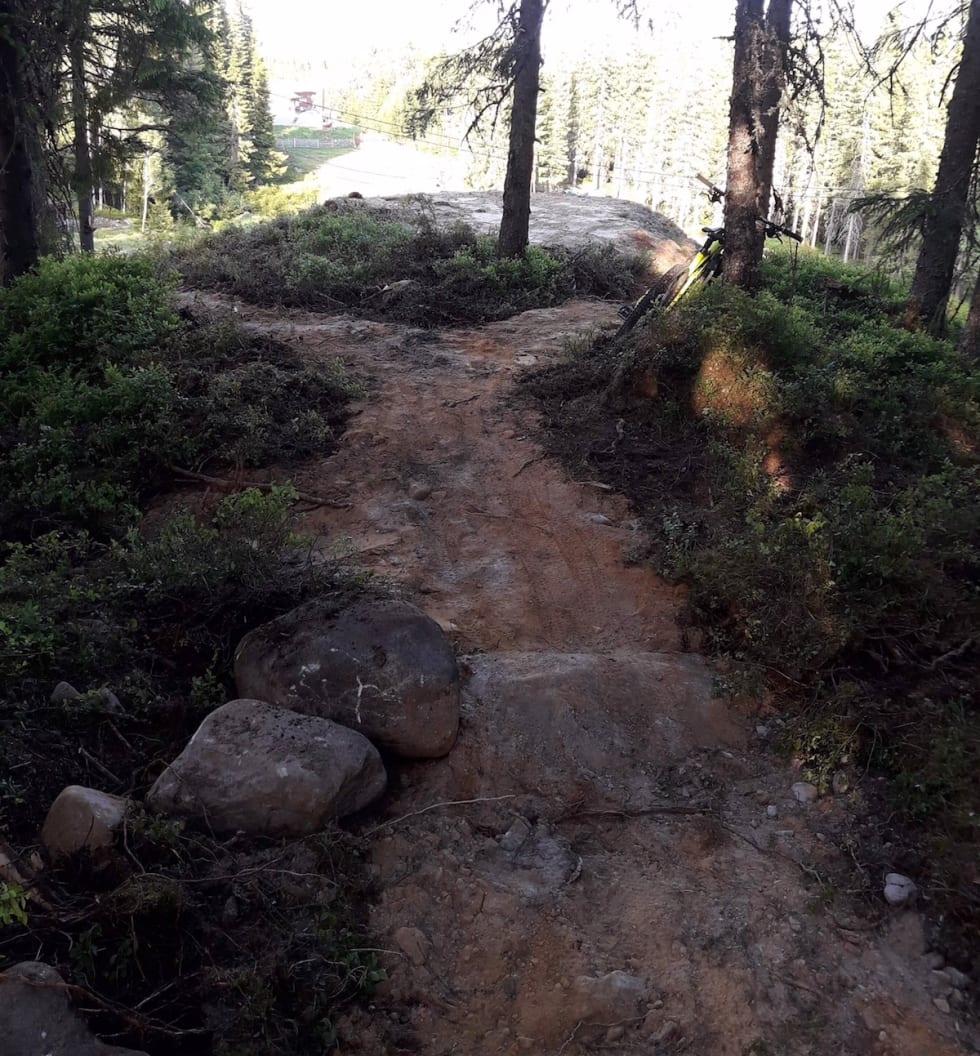 Sykkelanlegg Veldre Sag 2018 trail - Foto Geir Nyseveen 1200x