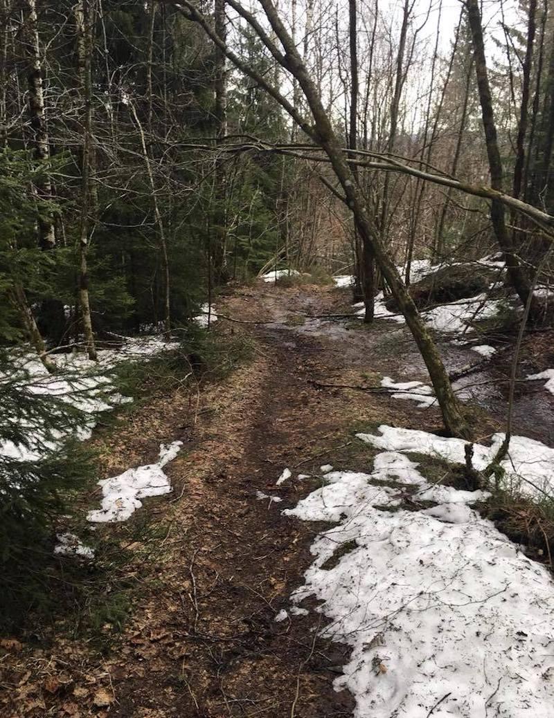 Trails wet telemark enduro 800x