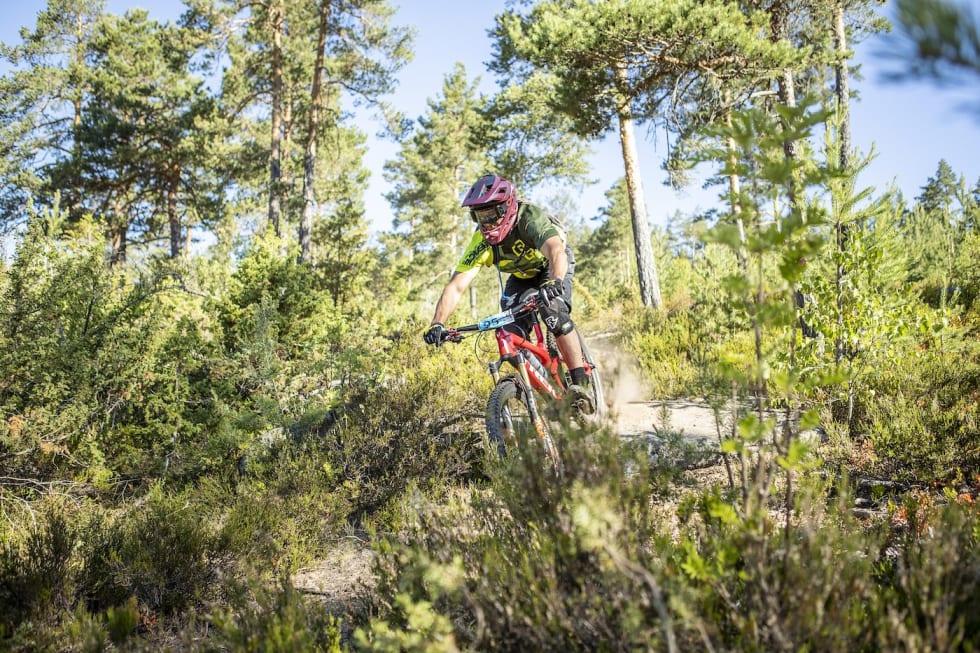 95 - Pål Westgaard 1400x933