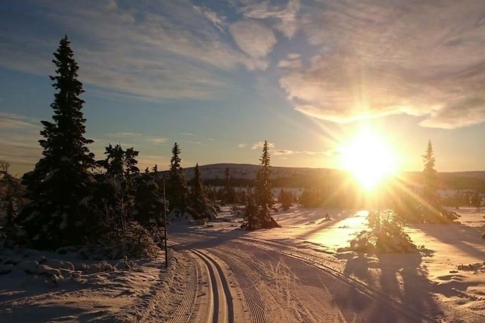 Området Sjusjøen-Øyerfjellet har over 80 kilometer oppkjørte løyper. Foto: Skiinfo Lillehammer