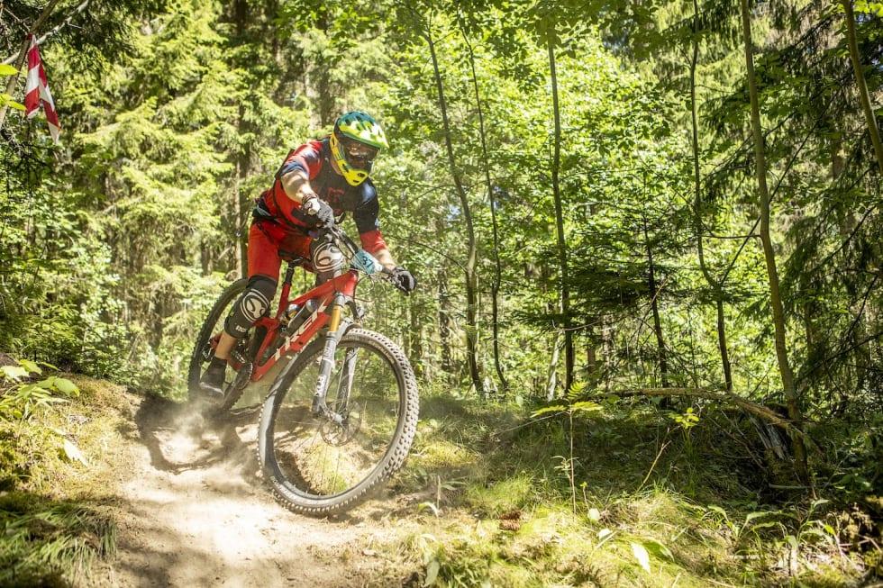 37- Pål Westgaard 1400x933