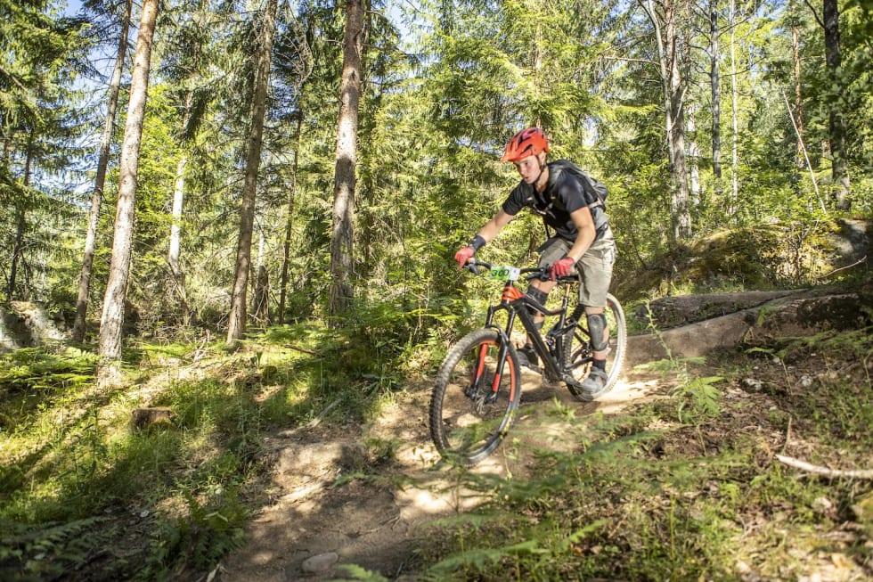 300 - Pål Westgaard 1400x933