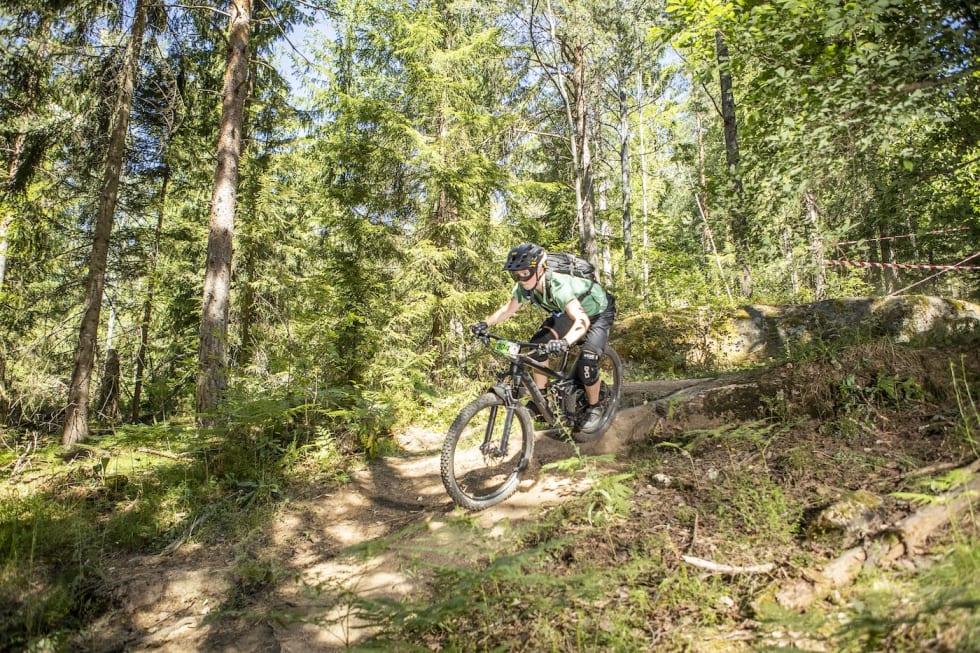 304 - Pål Westgaard 1400x933