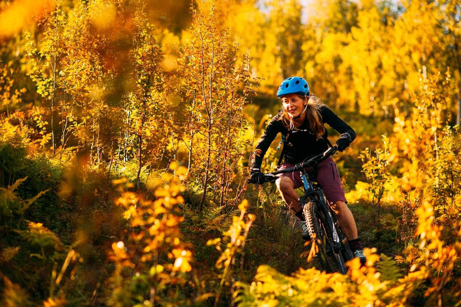 Sjarmøretappen: Siste del på veien ned fra toppen går i finfin bjørkeskog. Kirsten Buck Rustad finner veien gjennom nordnorske kjempetrær.