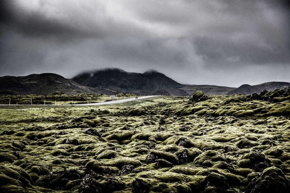 MOSETEPPE: Gigantiske, sylskarpe lavasteiner gir god grobunn for mose. Ved en kjapp stopp og litt eventyrlyst oppdaget vi at det kjentes som å løpe på marshmallows.