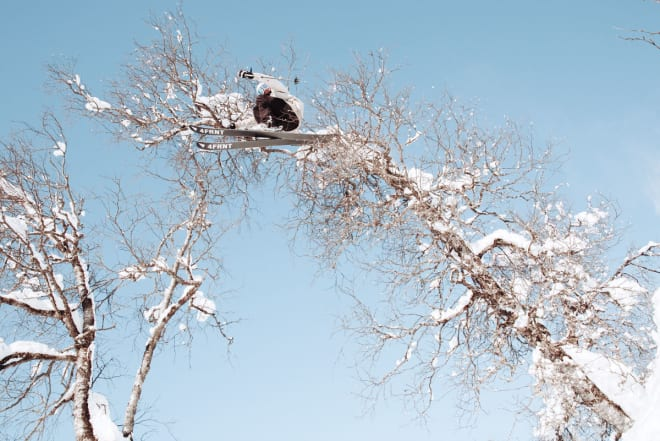 APE: Benjamin Forthun trives i trærne. Foto: Alric Ljunghager