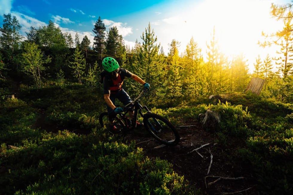 Sogn terrengsykkel - Foto Bård Basberg 1400x933