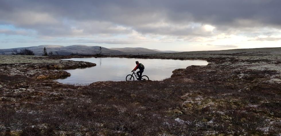 Forbi Hylltjønna på pansertæle i Engerdal. Foto: Stian Eilifsen
