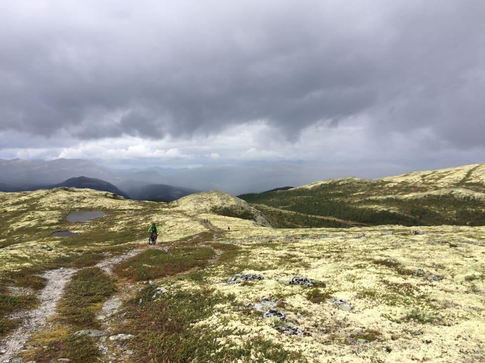 Solgløtt på søndag med regn på alle kanter - Julia Hamre 1200x900