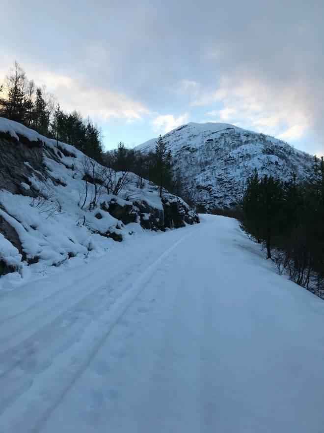 Anleggsveien mot Vanndalen. Foto Margit Fjellengen