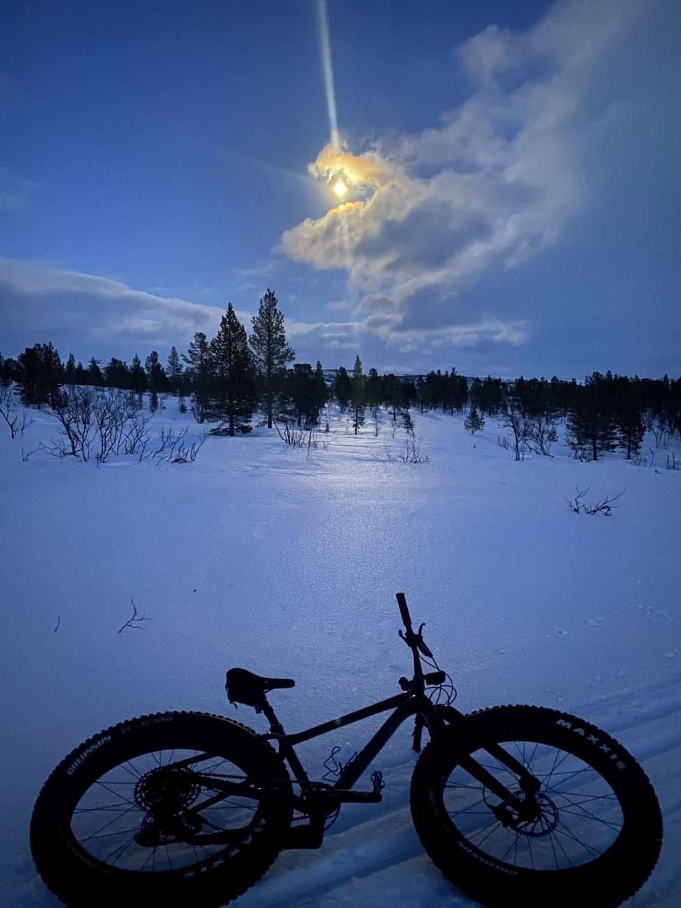 Arctic Alta Fatbike 2021
