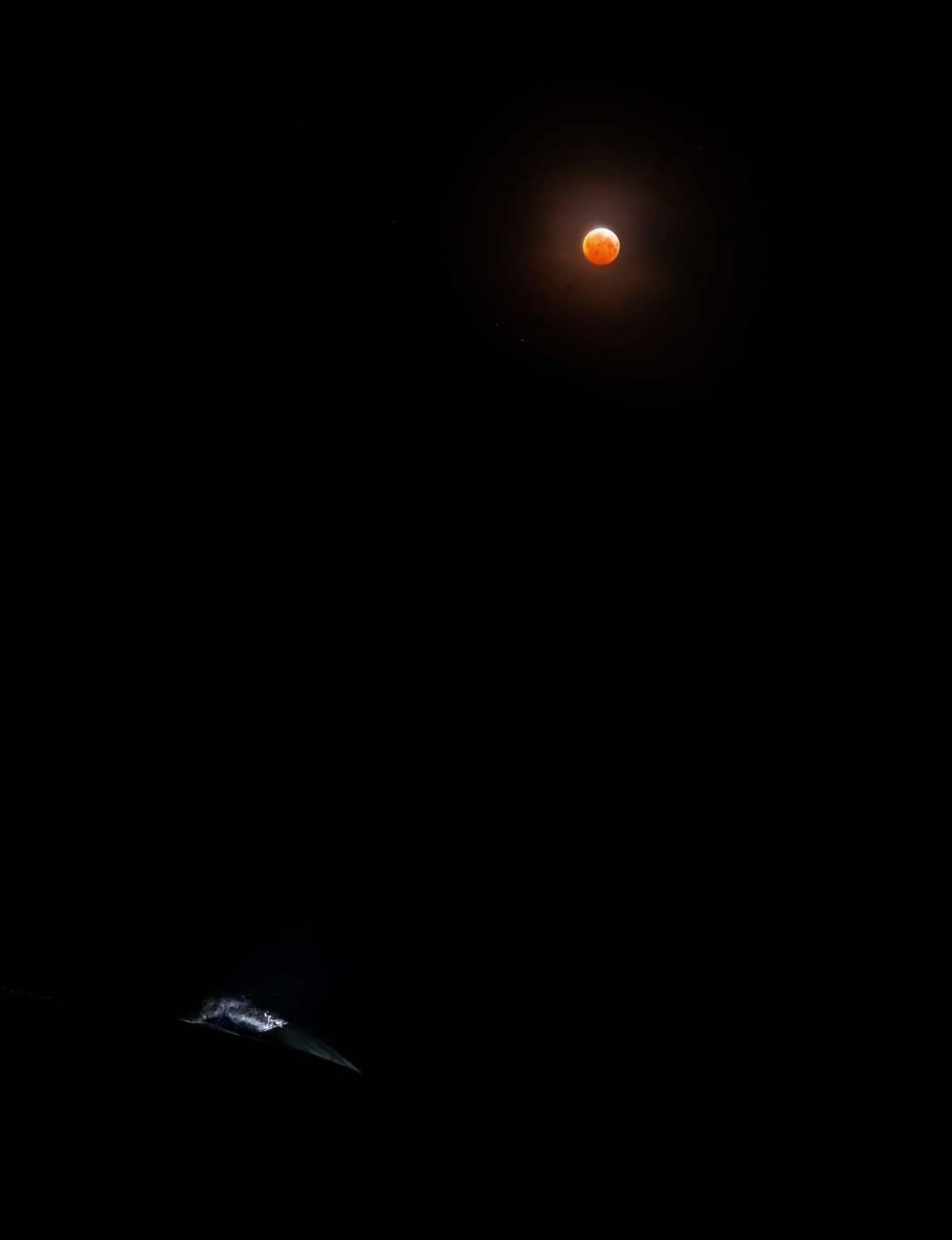 Blodmåne-2