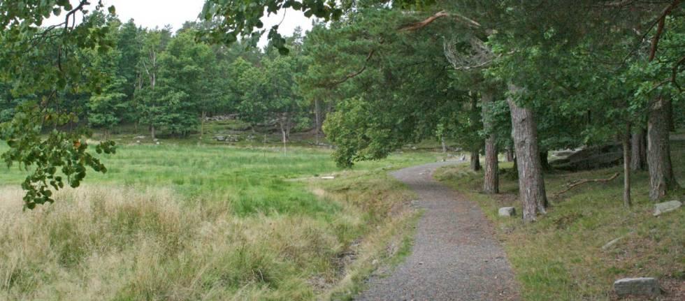 Bragdøya-Kristiansand-Torolf-Kroglund-2