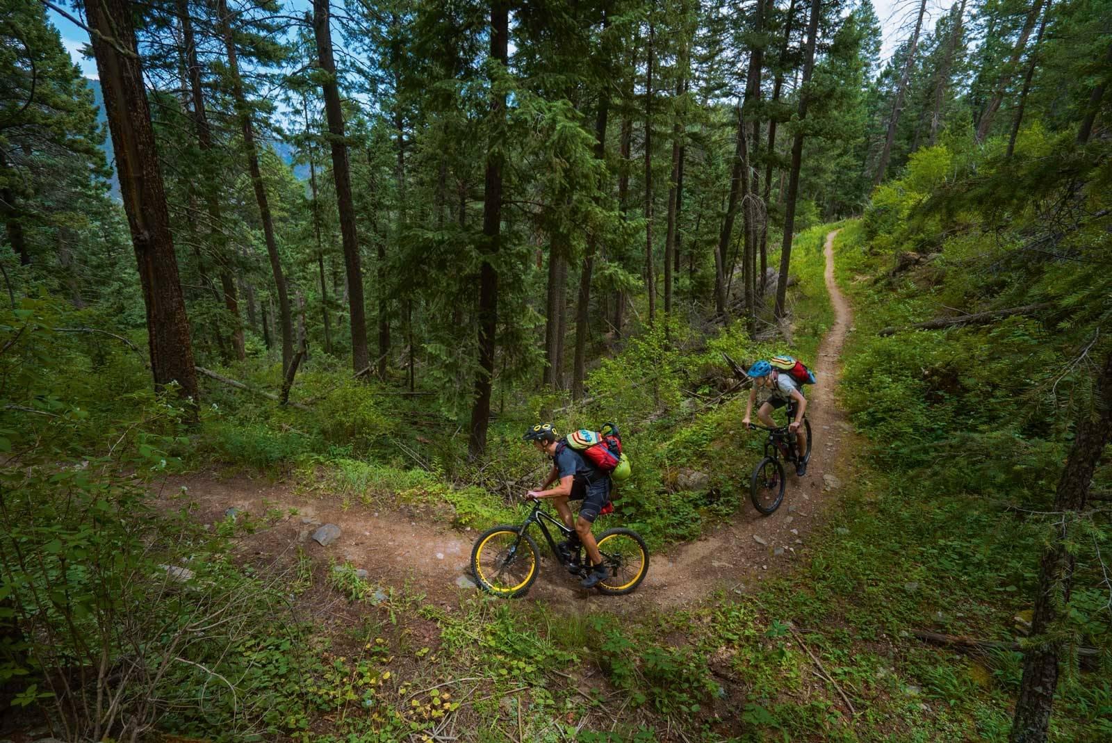Colorado-Trail-3