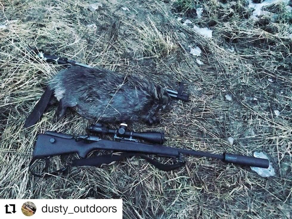 dsusty_outdoors