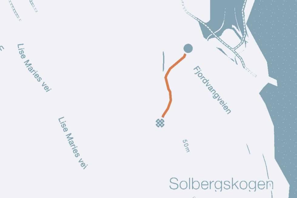 FlatebySkogvei-nesodden-syk