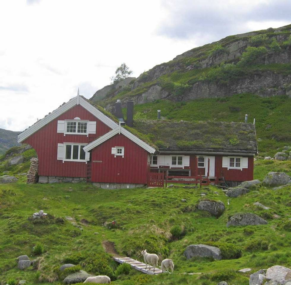 Gaukhei-Sentralt-i-Seterdal-Vesthei-Harald-Flå-3