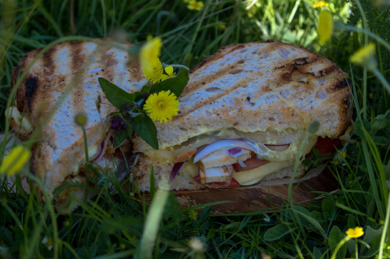 grilla sandwich