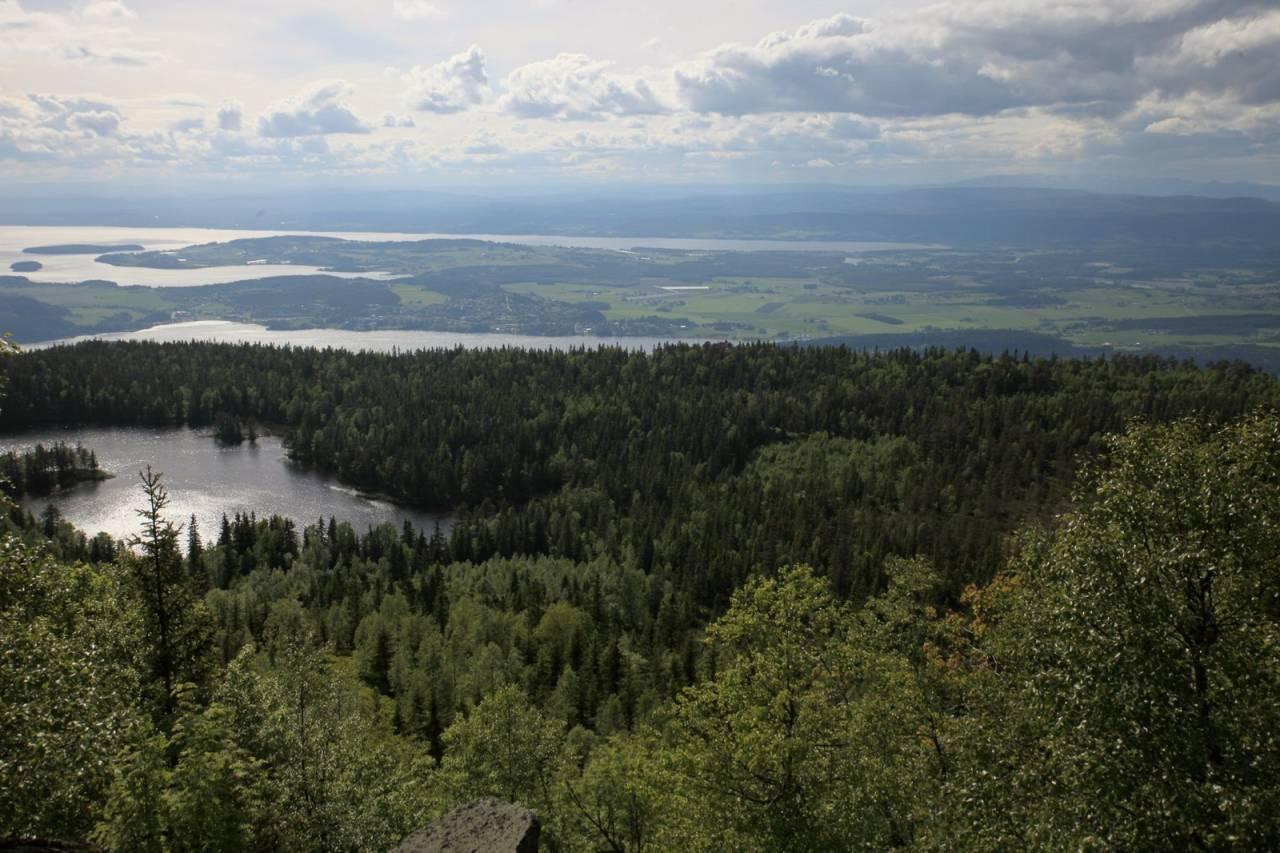 Gyrihaugen ligger et idyllisk lite vann som bærer det mindre idylliske navnet Migartjern.  Gunnar Kagge/www.kagge.net