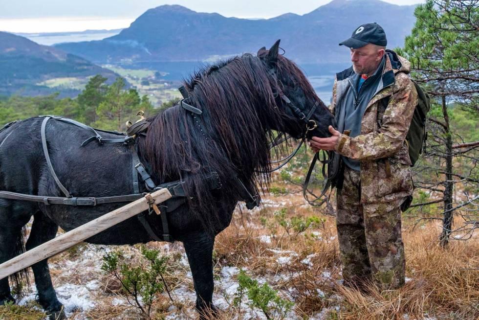 Hest-på-hjortejakt-8