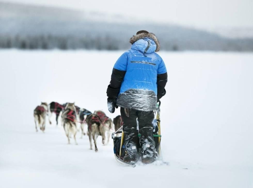 HUNDEKJØRING: Kuldegradene kan bli ekstra effektive bak et hundespann. Foto: Håkan Wike