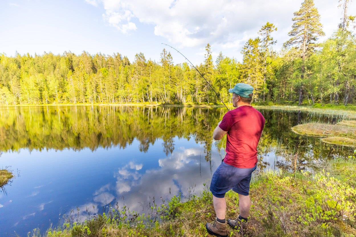 fiske i skogsvann