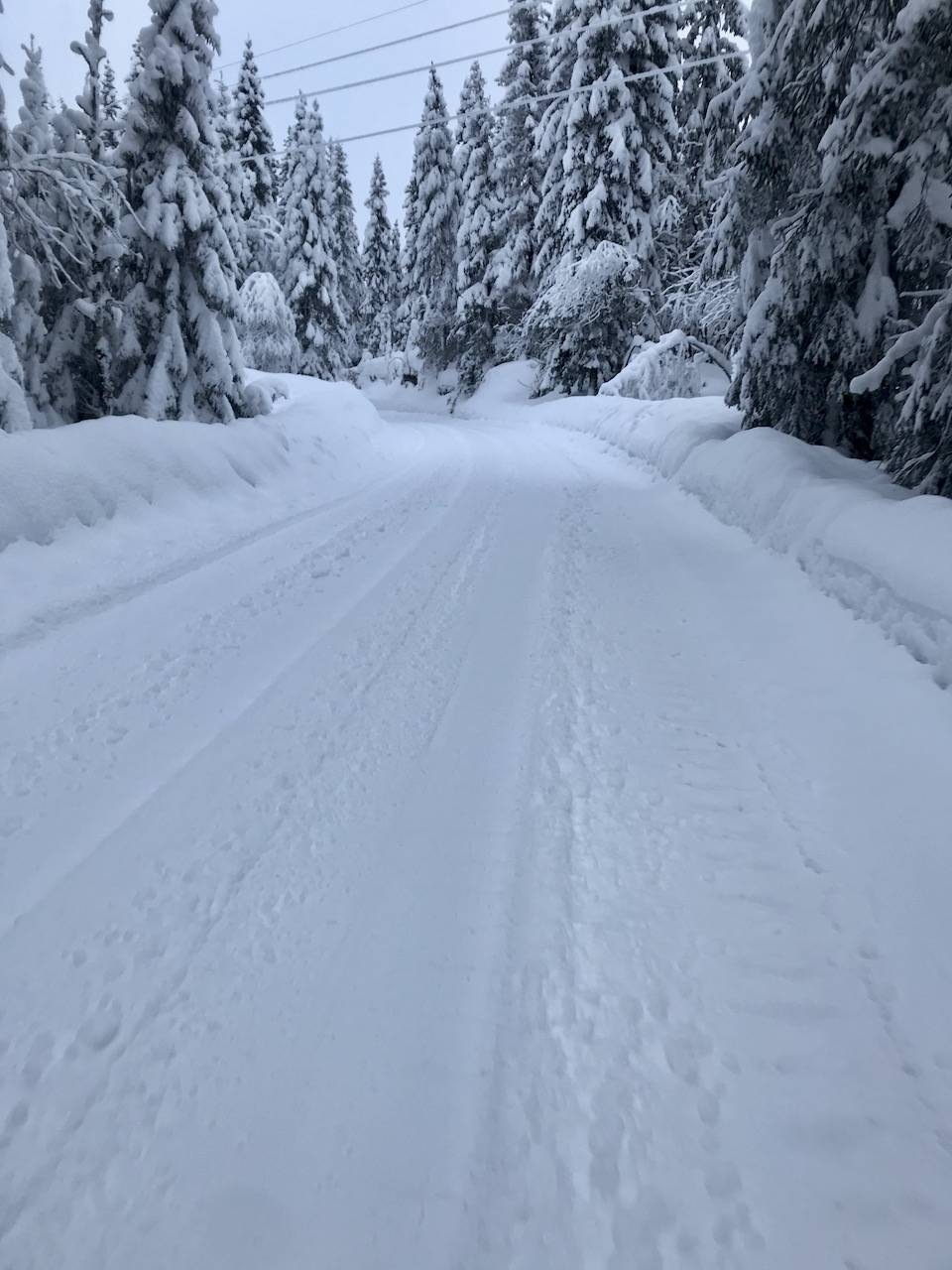 Snøsykling i Nordmarka.