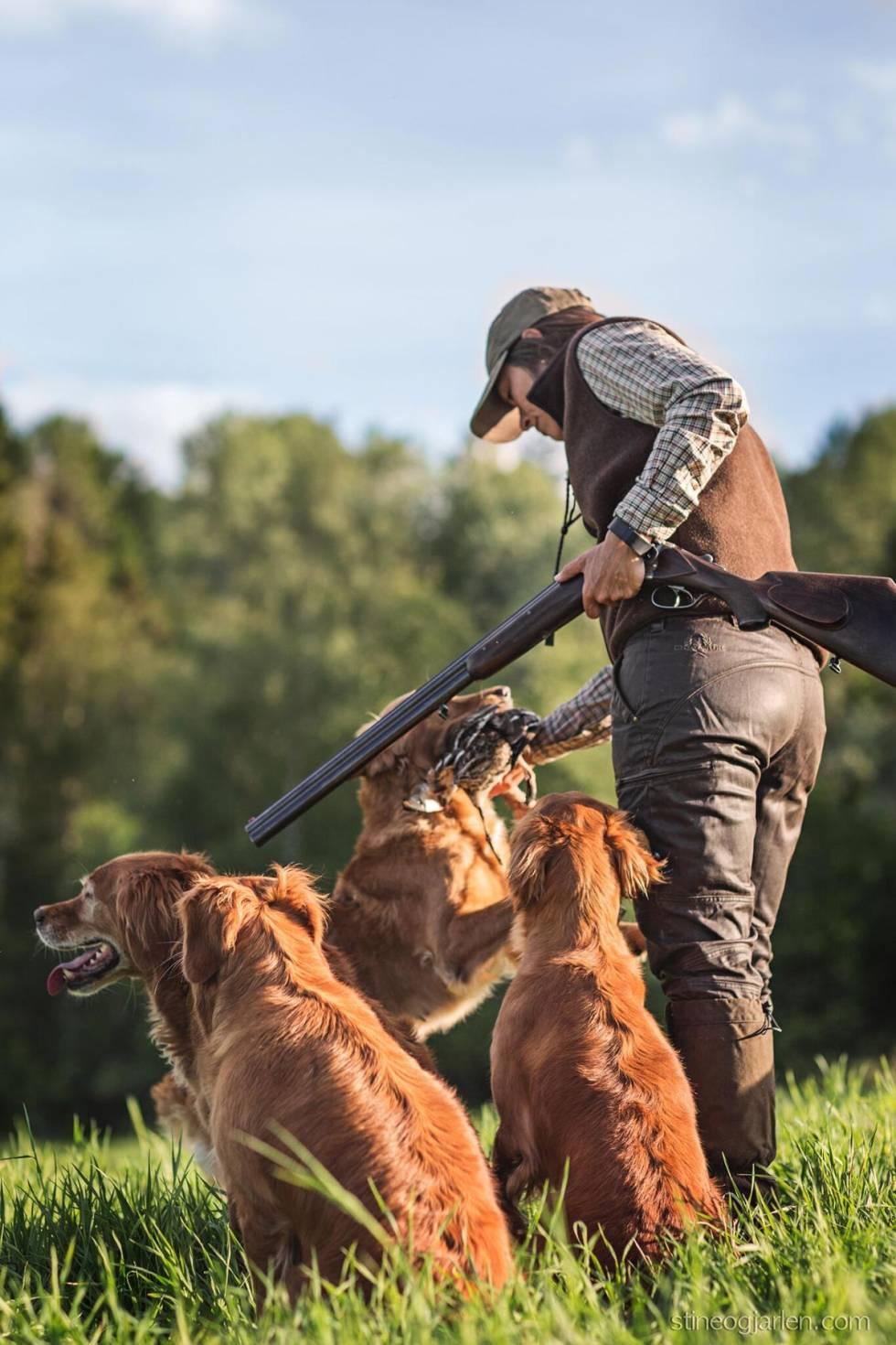 jakt golden retriever benedicte skaarnes
