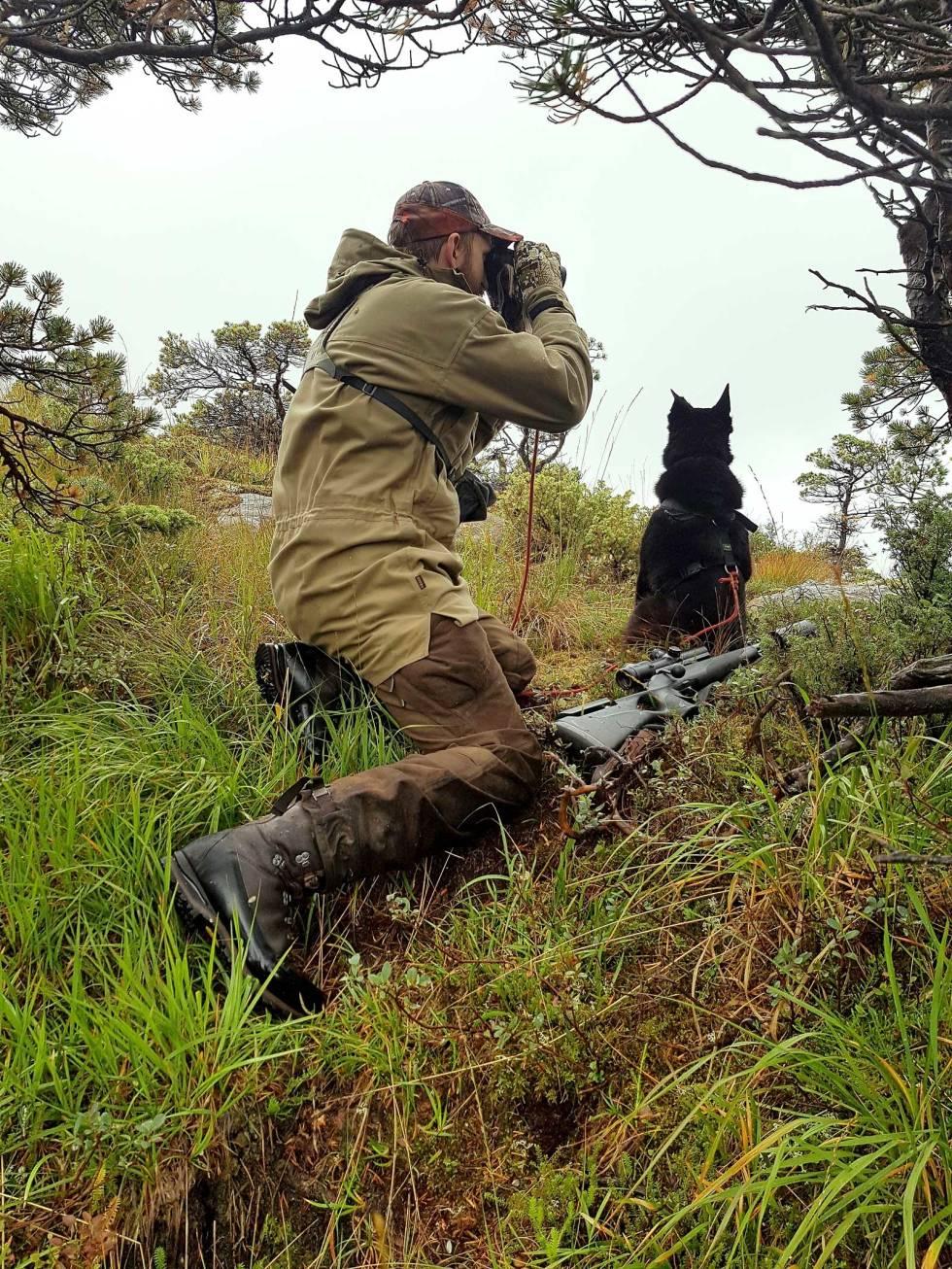 Jakt-med-bandhund-1